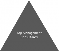 management consulting industry